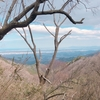 堀坂山から堀坂峠から観音岳