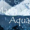 アクアマリン・サンタマリア vol.2:Aquamarine Santa Maria vol.2
