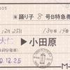JR東海  伊豆箱根鉄道大仁駅発行 常備軟券特急券
