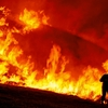サンドボックス分析「WildFire」について