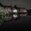 花見はどこ行く?井の頭公園(吉祥寺)の桜はいかが?