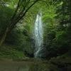 琴滝 ~流水が琴糸のように見えるといわれる京都府内最大級の滝~