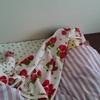 (続編)安心毛布・ライナスの毛布(我が家の場合)