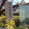 『葵 徳川三代』から見る春日局、そして樹木希林さん