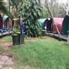 オーストラリアのバイロンベイのジャングルの中にある宿