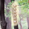 相模原市ウォーキング協会の「こもれびの森散策」8月24日開催!