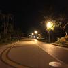 走る 31/100 外灯がしっかり整備されているから奥武山公園は夜でも明るいよ。