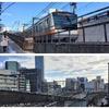 JR御茶ノ水駅にイソヒヨドリ!