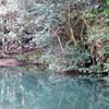 黒五谷から荒地山へのハイキング(その1)住吉道