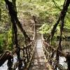 大歩危・祖谷の半日観光モデルコース!3つのかずら橋と小便小僧・ひの字渓谷をめぐる旅