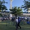 【スタジアム観戦記】横浜スタジアム:顧客サービスは進んでいるが、座席が狭くて辛かった