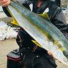 宗像沖ノ島 磯釣り 釣行日記 |中バナ&ヒデサキ 2020.3.26 〜食レポ番外編〜