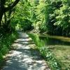 養老渓谷沿いの涼スポット「弘文洞跡」と「共栄・向山トンネル」
