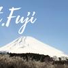 富士山の見える絶景温泉と菜の花畑に癒される