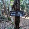 座頭谷から樫ヶ峰へのハイキング(その5)座頭谷離れ東六甲縦走路まで