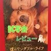 「僕のワンダフルライフ」試写会に行ってきました❤︎愛犬家にとって夢のある話だっ!!