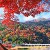 京都の秋は走って朝ごはん