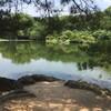 【栗林公園】四国・香川のオススメ観光スポット【日本三名園を越える美しさ】