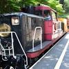 京都 紅葉100シリーズ  トロッコ列車と保津川下り NO.88