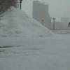 『東の怪物』と呼ばれる寒気に襲われたイギリスでは5年振りの大雪に!!アイルランドでも36年振りの大雪に!!