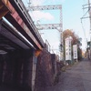雑木林を抜けるとそこはレアな御朱印と秘密の場所、宝塚神社