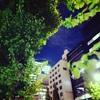 ある夜の風景
