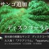【アクアリウム】ディスクコーラル サンゴ