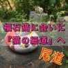 【尾道】福石猫に会いに「猫の細道」へ【行き方】