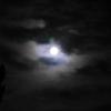"""""""牀前看月光"""""""