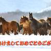 【競馬ブログ】新年から予想しまくってます!!