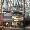 貨物列車撮影 5/24 早朝の東海道貨物列車
