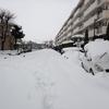 【2013-14の帰省と車の話】 関東の大雪を経験し4WD車が欲しくなってきた