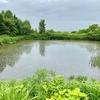 滝川さくらんぼ園の池(仮称)(北海道滝川)