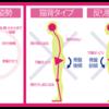 腰痛に襲われる部位と痛みを起こすメカニズム