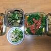 野菜大量につき、作りおきのつもりが完食