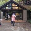 老若男女楽しめる東京にある緑あふれる公園「井の頭恩賜公園&井の頭自然文化園」