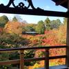 東福寺の紅葉のお話2。