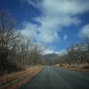 国内を一人旅するなら「ドライブ旅行」がおすすめの理由5つ