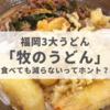 食べても減らないってホント?東京民が福岡の「牧のうどん」を食べた感想