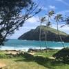 ビバ!ハワイ 恐怖のマノアフォール・ココヘッド・ハナウマ湾・マカプウタイドプール