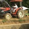 ホールクロップサイレージ(Whole Crop Silage)用稲の円筒とロール巻作業