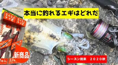 【実釣】シーズン到来!今年発売の釣れるエギランキング!!【エギング】