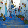 青と、路地裏と、猫と。モロッコの青い町シャウエンが美しすぎた