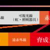 【8月19日(土)】復元のススメ@東京 開催決定!
