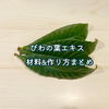 ビワの葉エキス作り方|東城百合子さんの自然療法の本を参考に作ってみました