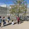 2年生:いじめ防止プログラム「自分の木」