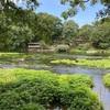 【天然記念物】柿田川公園のオススメ情報をご紹介!!〔泉頭城跡〕