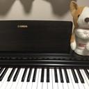 ★30歳から10年ぶりのピアノ再開★