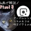 【Pixel3】Googleレンズの使い方を動画で解説!うちのネコ(雑種)をリアルタイム認識させてみたよ!