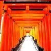 日本人なら千本鳥居を体感すべき!(稲荷山のただならぬ雰囲気もぜひ…)